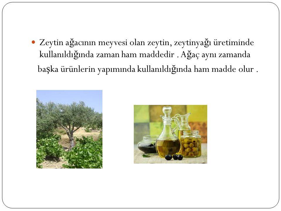 Zeytin ağacının meyvesi olan zeytin, zeytinyağı üretiminde kullanıldığında zaman ham maddedir . Ağaç aynı zamanda