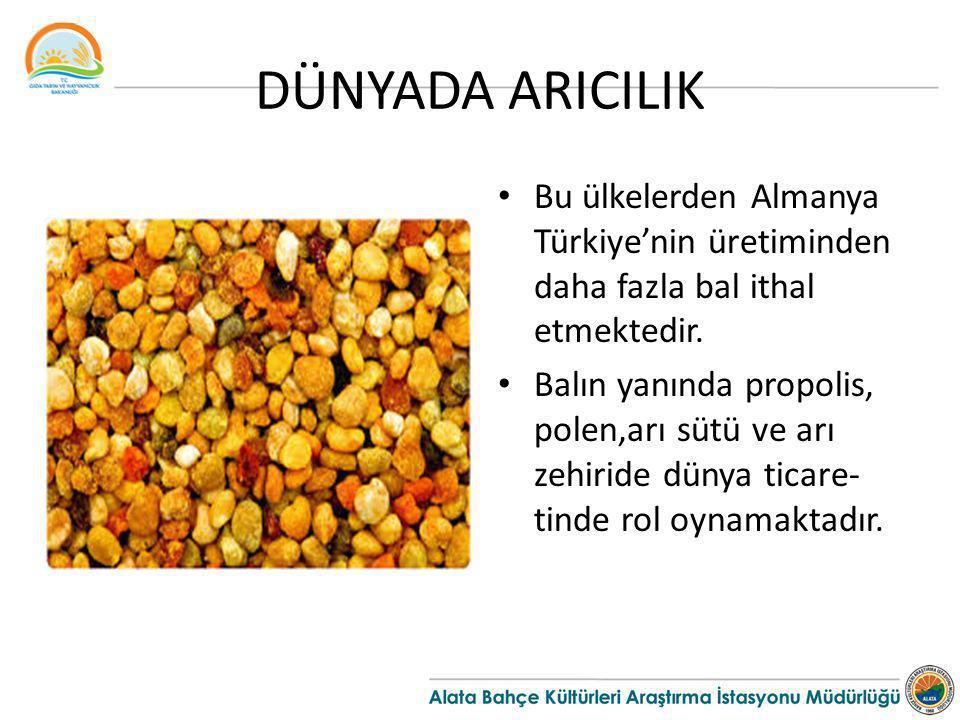 DÜNYADA ARICILIK Bu ülkelerden Almanya Türkiye'nin üretiminden daha fazla bal ithal etmektedir.