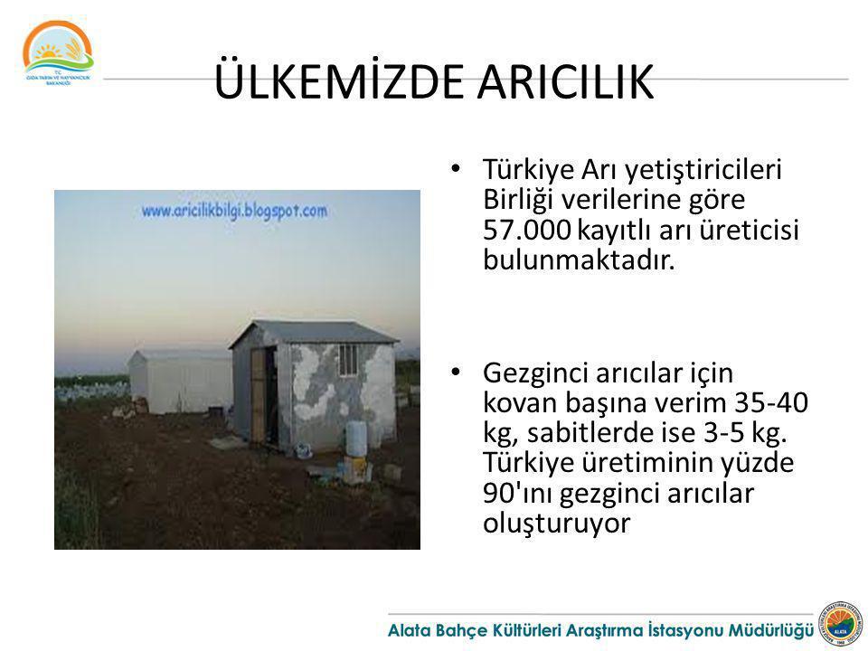 ÜLKEMİZDE ARICILIK Türkiye Arı yetiştiricileri Birliği verilerine göre 57.000 kayıtlı arı üreticisi bulunmaktadır.