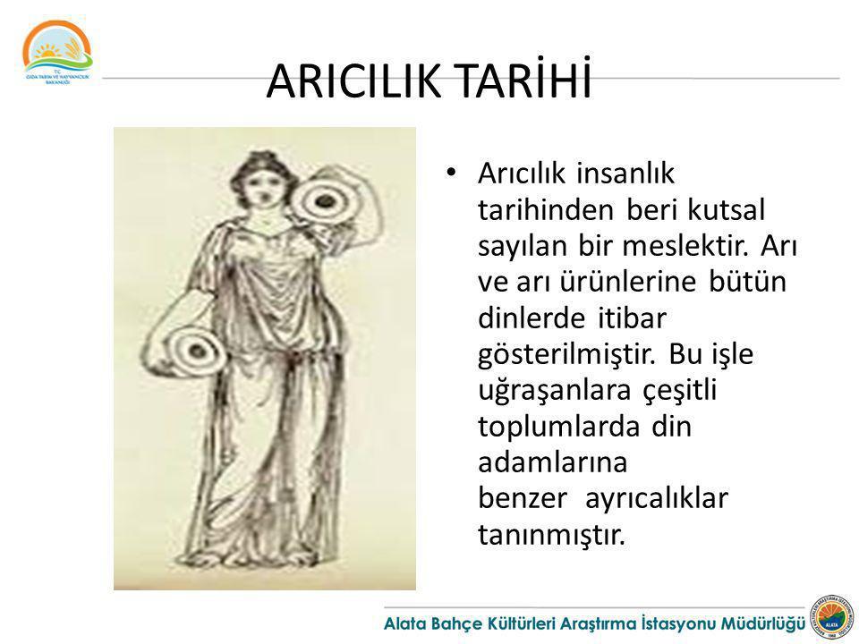 ARICILIK TARİHİ