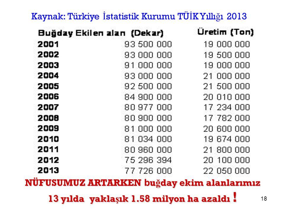Kaynak: Türkiye İstatistik Kurumu TÜİK Yıllığı 2013