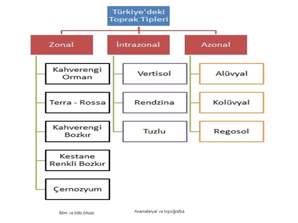 Anamateryal ve topoğrafya