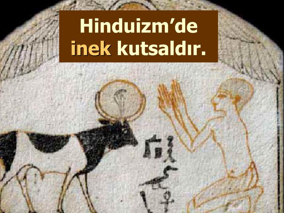 Hinduizm'de inek kutsaldır.