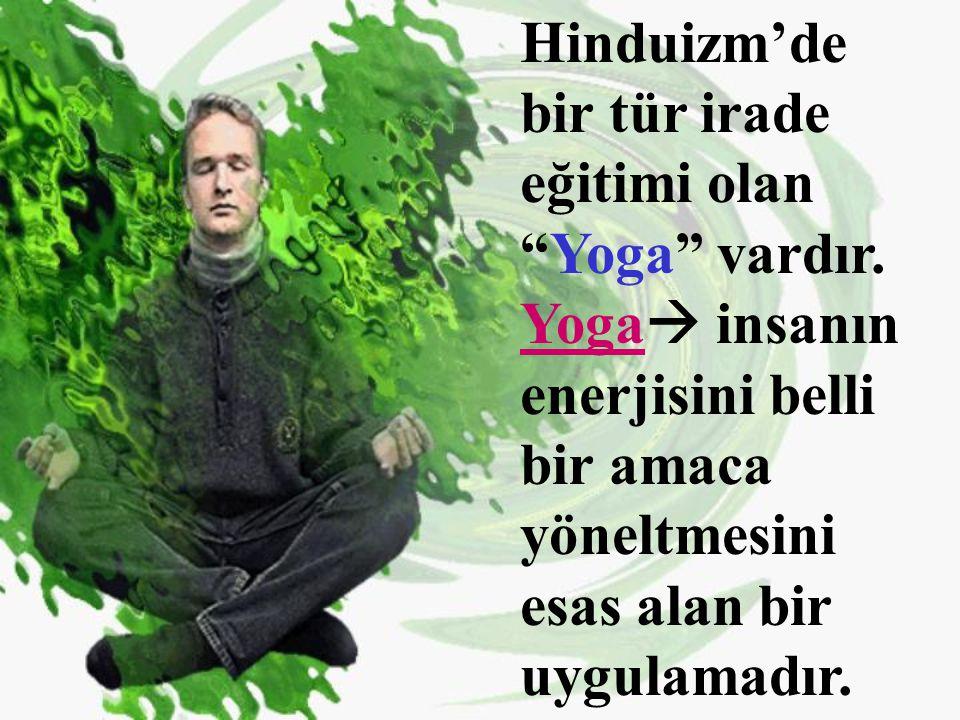 Hinduizm'de bir tür irade eğitimi olan Yoga vardır