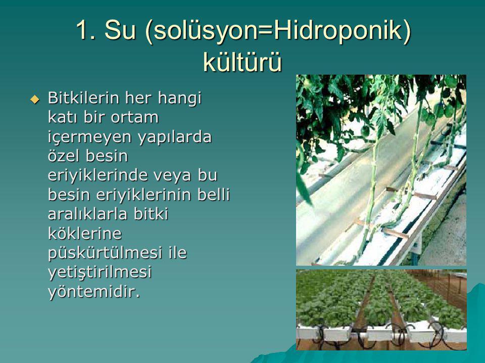 1. Su (solüsyon=Hidroponik) kültürü