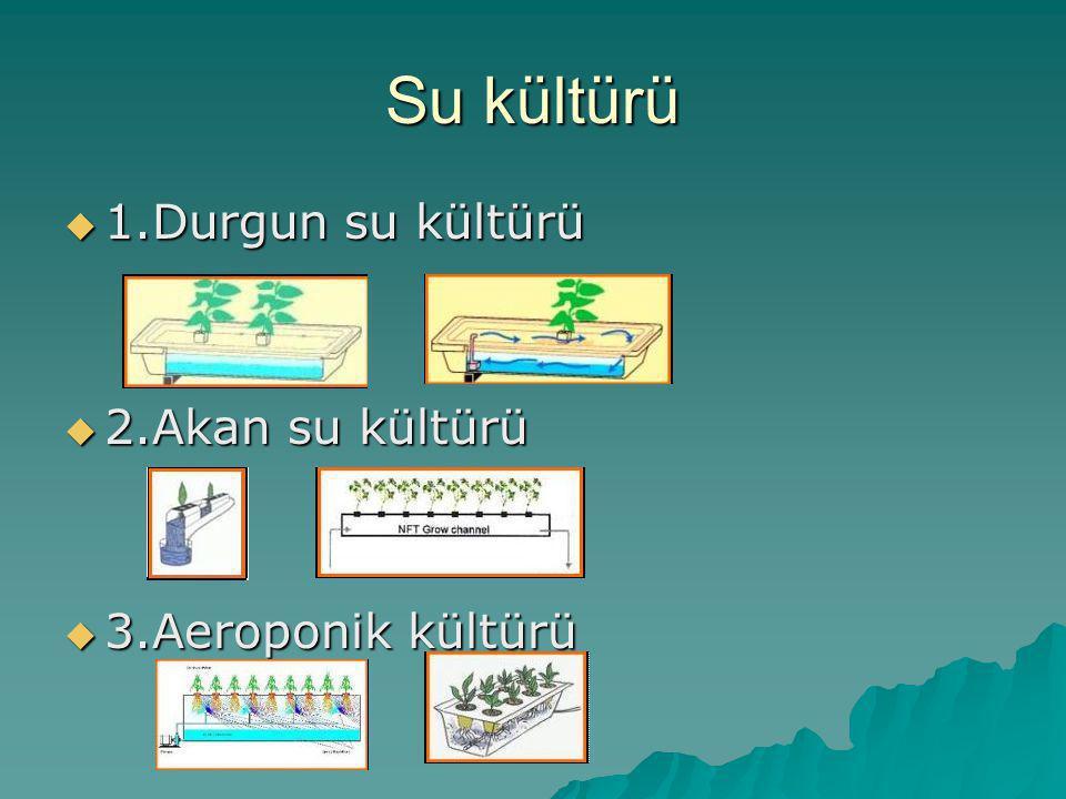 Su kültürü 1.Durgun su kültürü 2.Akan su kültürü 3.Aeroponik kültürü