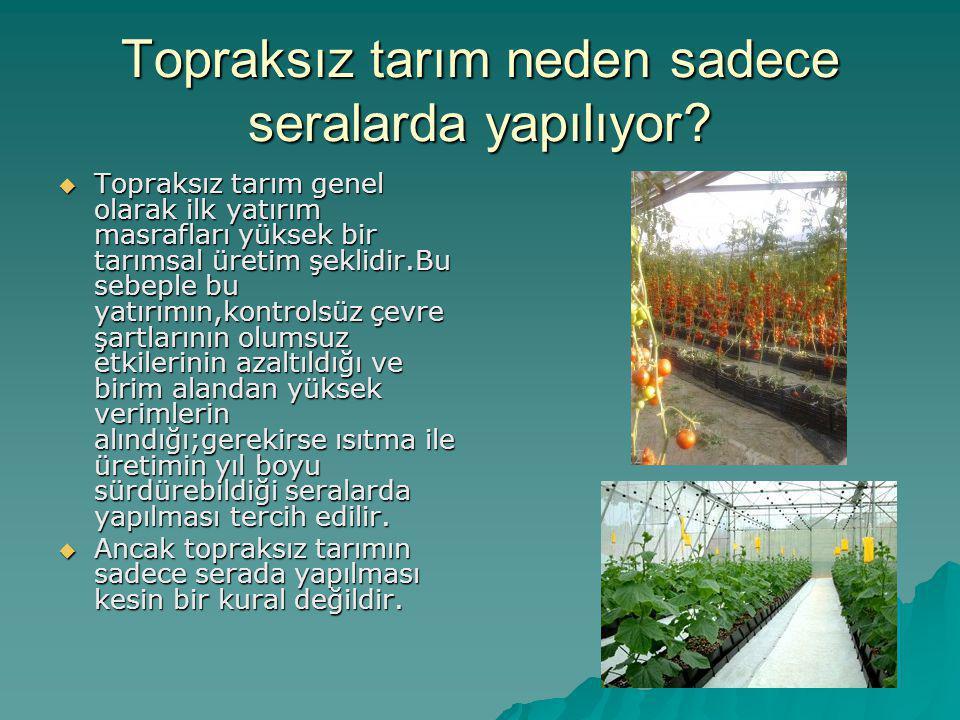Topraksız tarım neden sadece seralarda yapılıyor