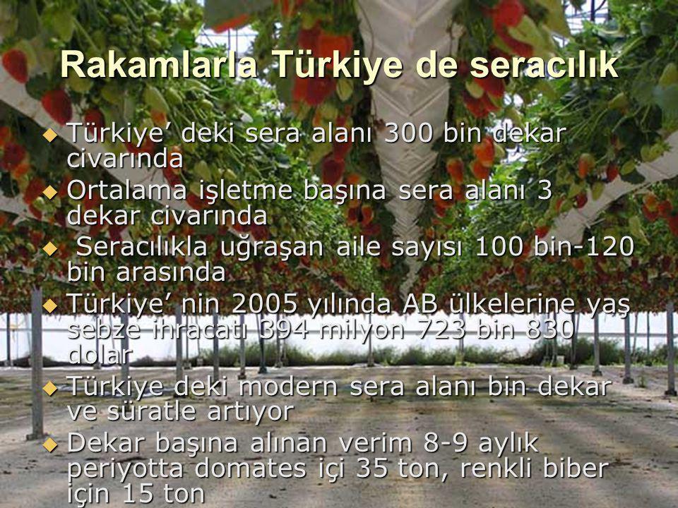 Rakamlarla Türkiye de seracılık