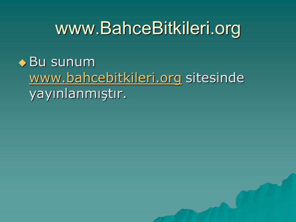 www.BahceBitkileri.org Bu sunum www.bahcebitkileri.org sitesinde yayınlanmıştır.