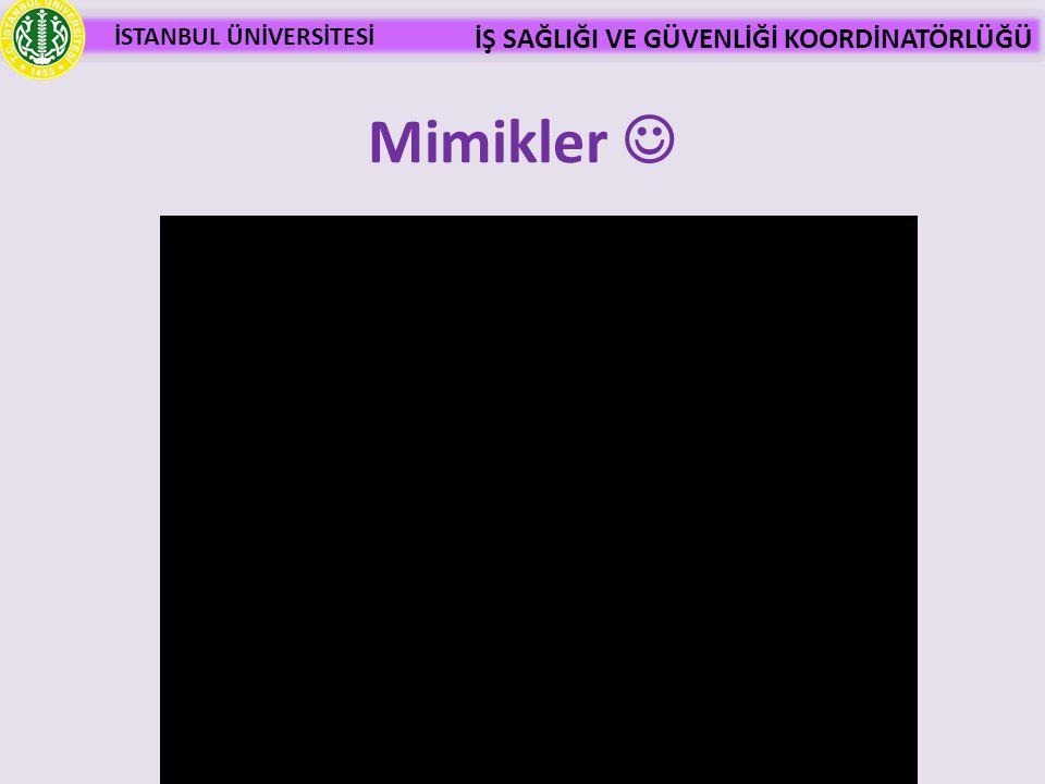 Mimikler 