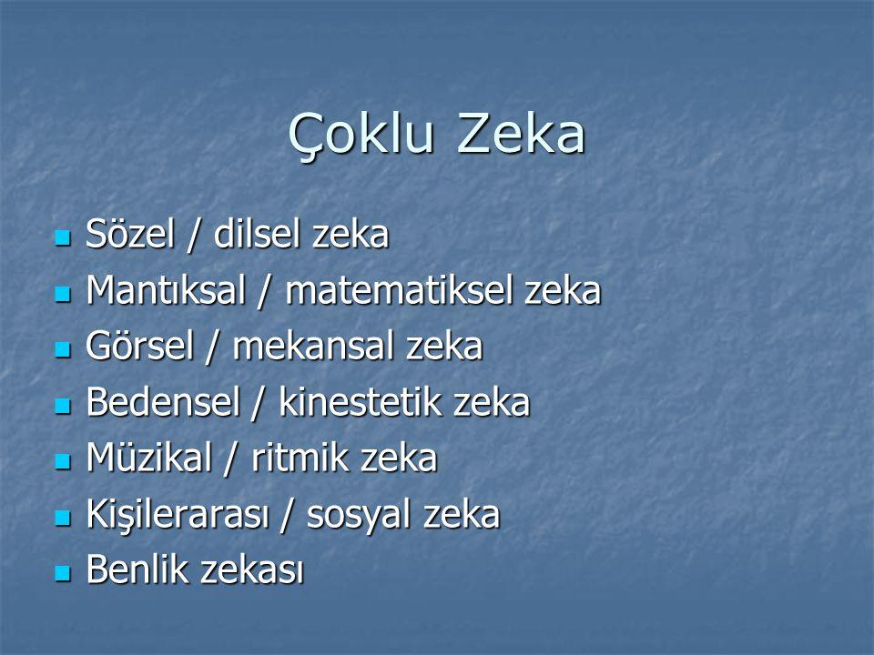 Çoklu Zeka Sözel / dilsel zeka Mantıksal / matematiksel zeka