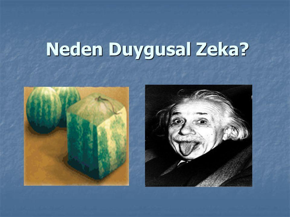 Neden Duygusal Zeka