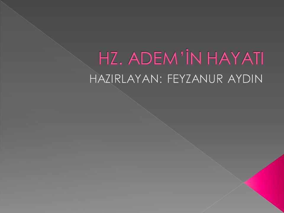 HAZIRLAYAN: FEYZANUR AYDIN