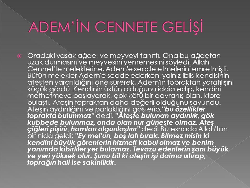 ADEM'İN CENNETE GELİŞİ