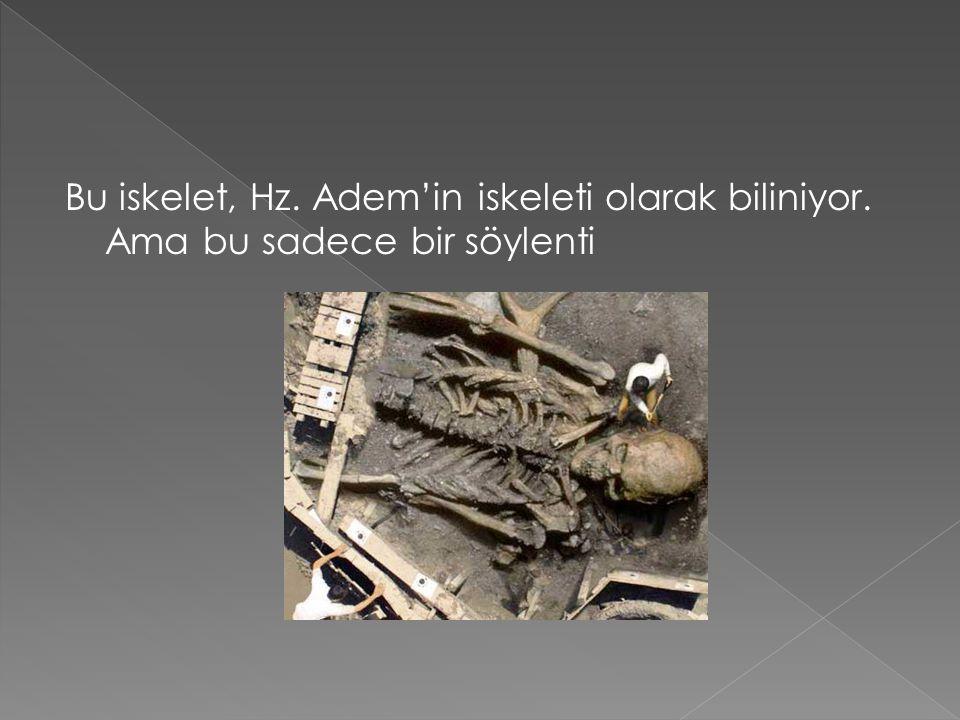 Bu iskelet, Hz. Adem'in iskeleti olarak biliniyor