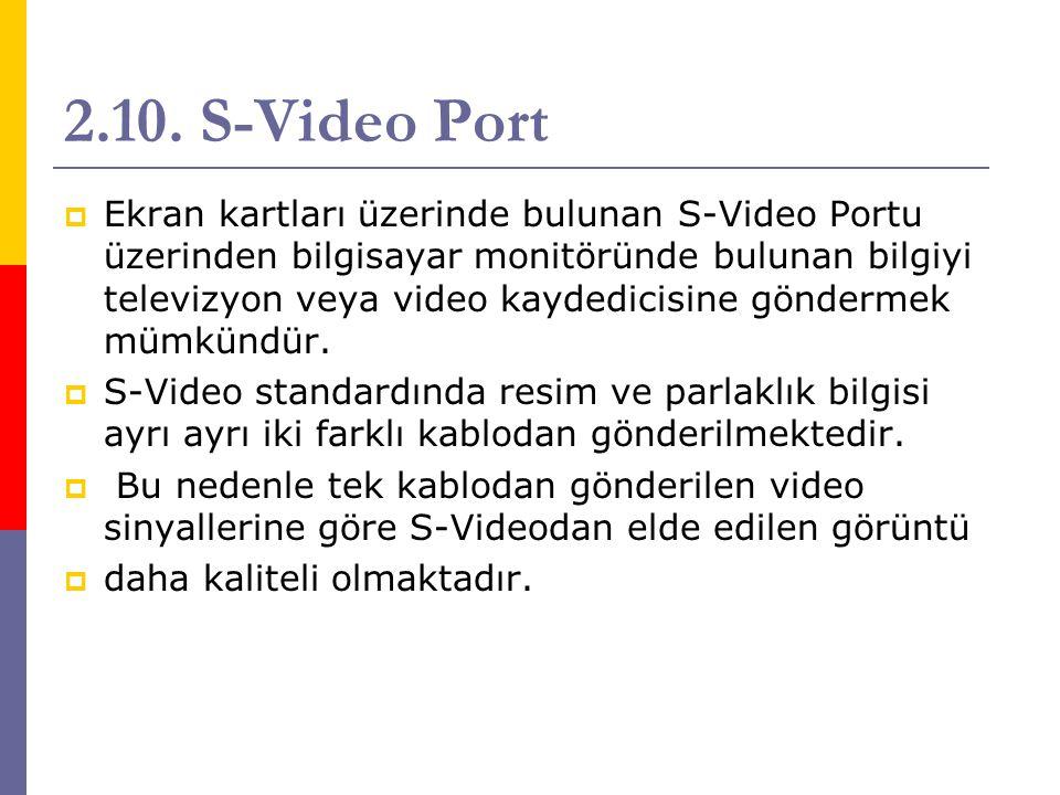 2.10. S-Video Port