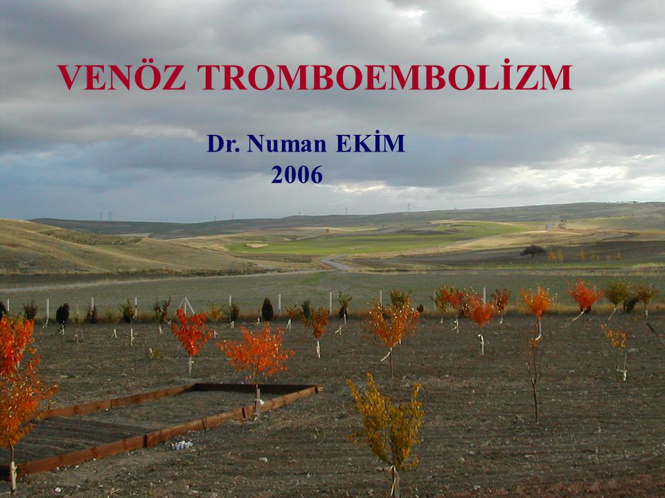 VENÖZ TROMBOEMBOLİZM Dr. Numan EKİM 2006