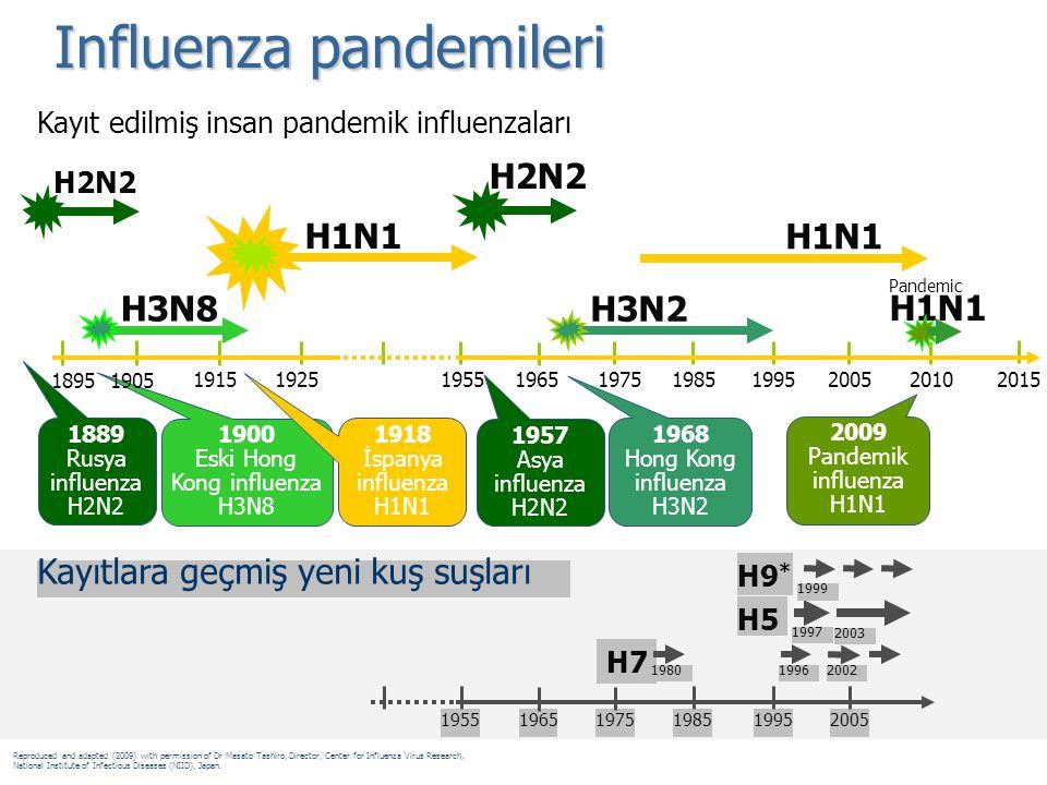 Influenza pandemileri