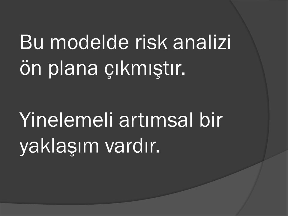 Bu modelde risk analizi ön plana çıkmıştır