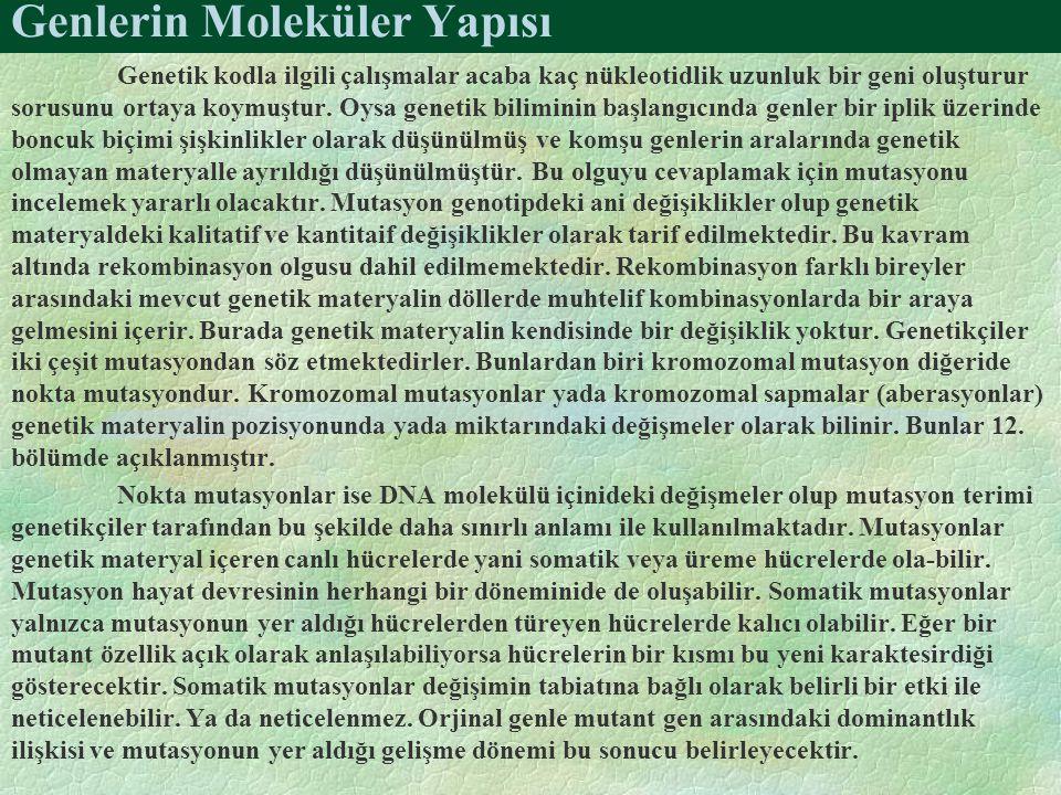 Genlerin Moleküler Yapısı