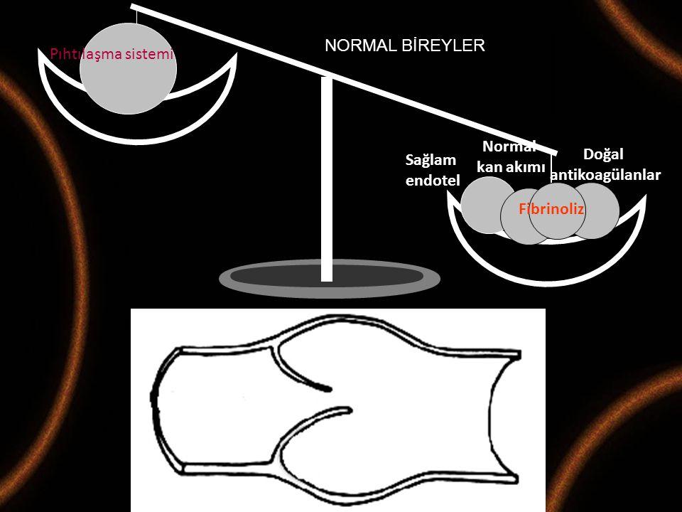 Maternal Fetal Tıp ve Perinatoloji Derneği 2008-M.Demir