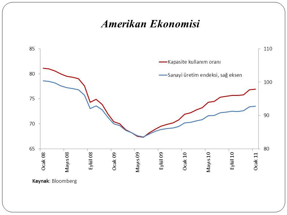 Amerikan Ekonomisi