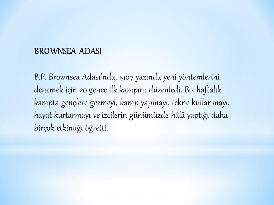 BROWNSEA ADASI