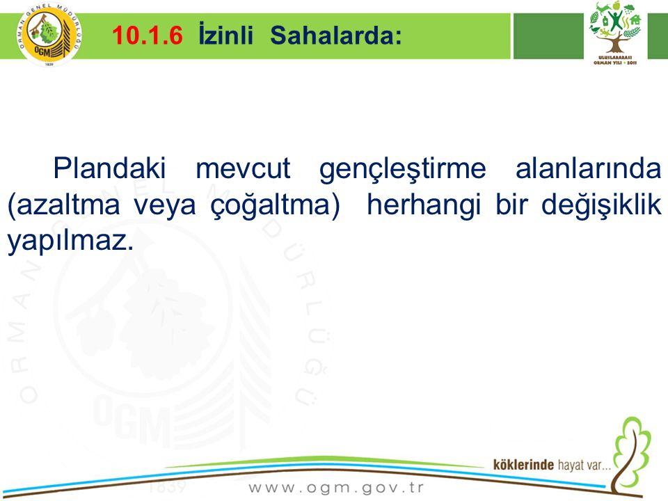 10.1.6 İzinli Sahalarda: Kurumsal Kimlik. 16/12/2010.
