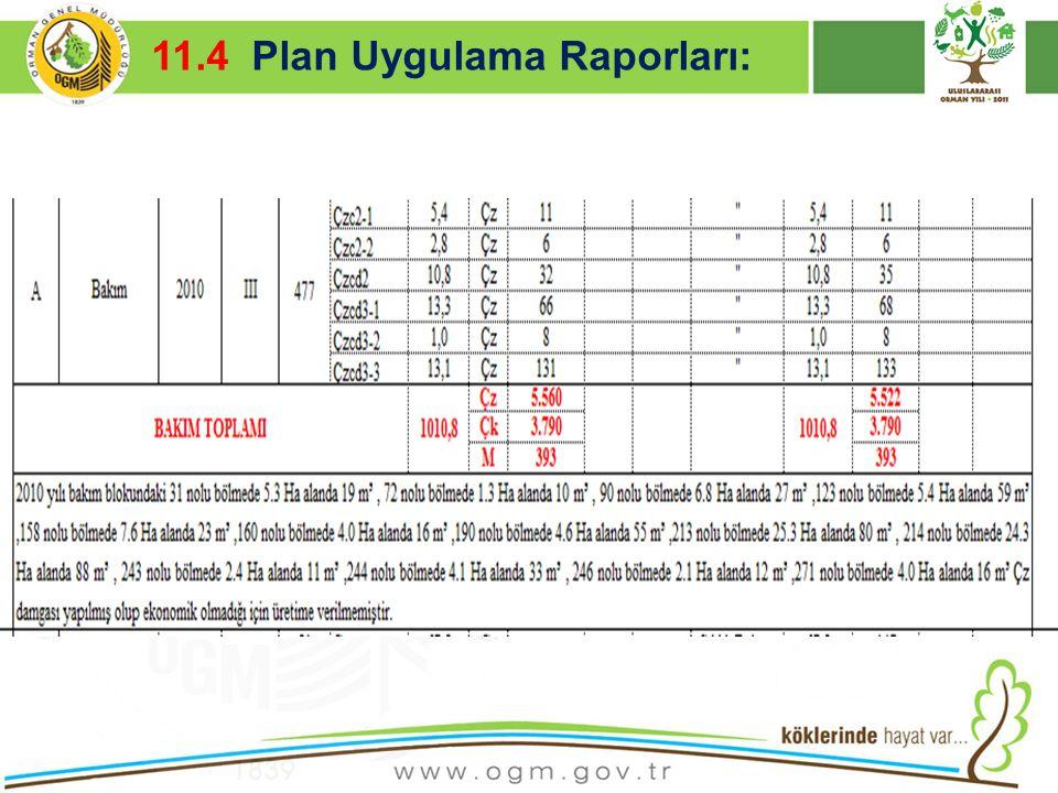 11.4 Plan Uygulama Raporları: