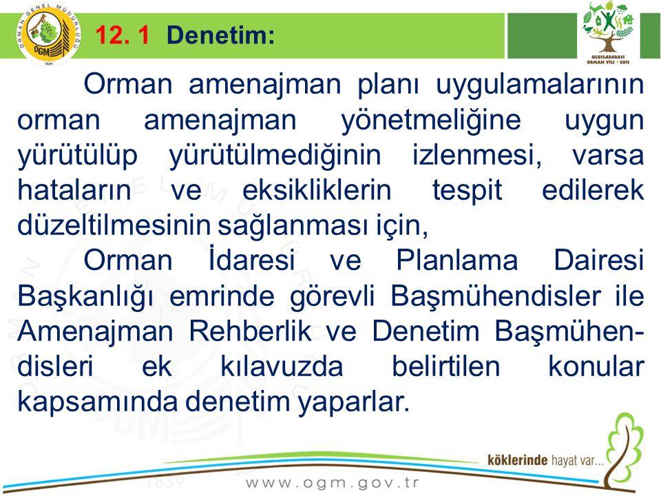 12. 1 Denetim: Kurumsal Kimlik. 16/12/2010.
