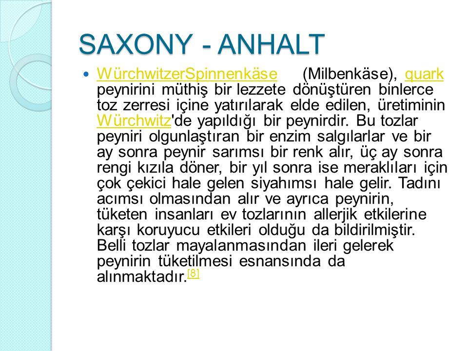 SAXONY - ANHALT