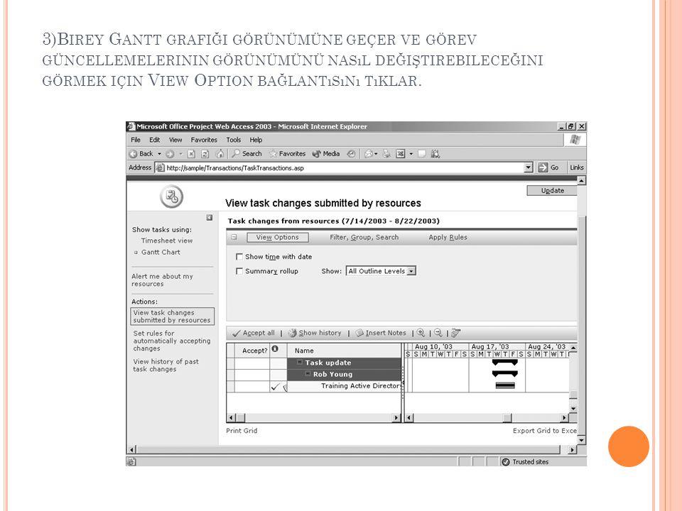 3)Birey Gantt grafiği görünümüne geçer ve görev güncellemelerinin görünümünü nasıl değiştirebileceğini görmek için View Option bağlantısını tıklar.