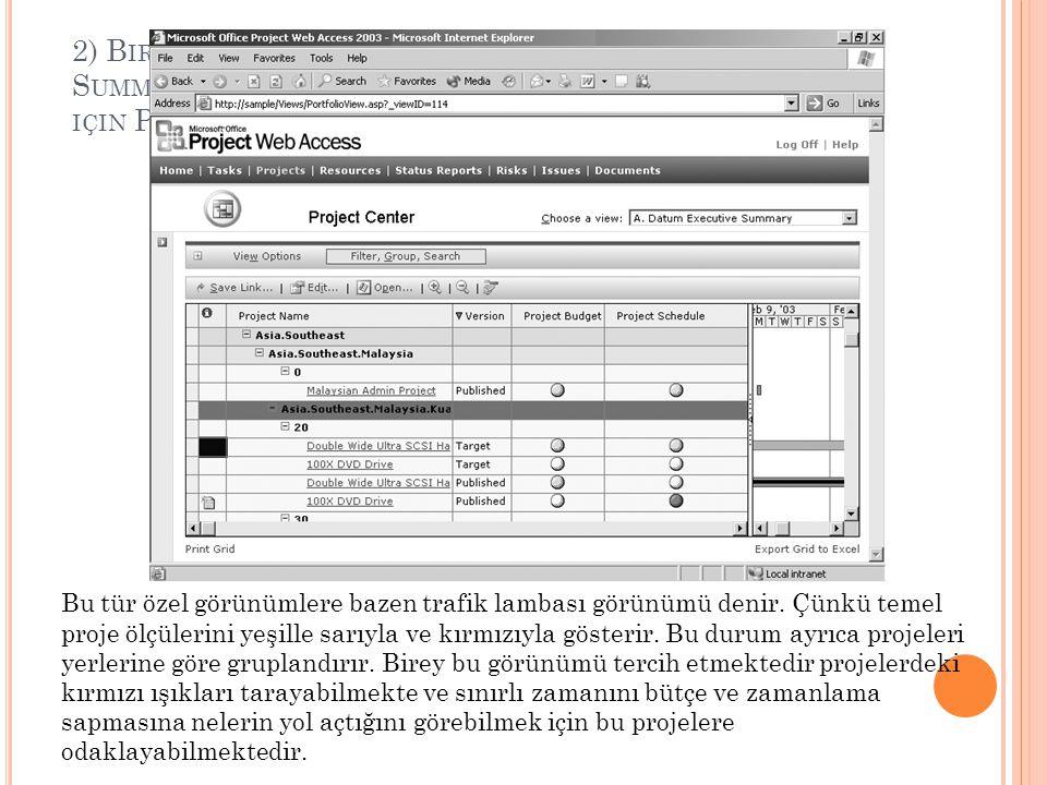 2) Birey, Choose a view kutusunda X Executive Summary i seçer ve görünümünün tümünü görebilmek için Project Web Access deki görev bölmesini kapatır.