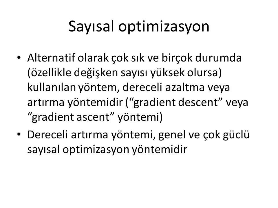 Sayısal optimizasyon