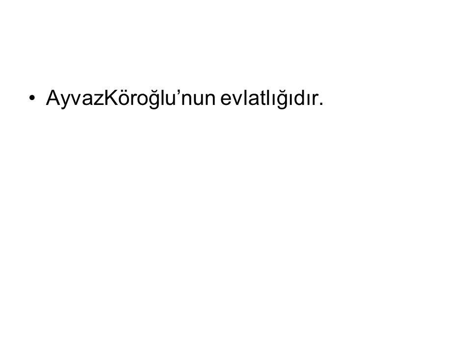 AyvazKöroğlu'nun evlatlığıdır.