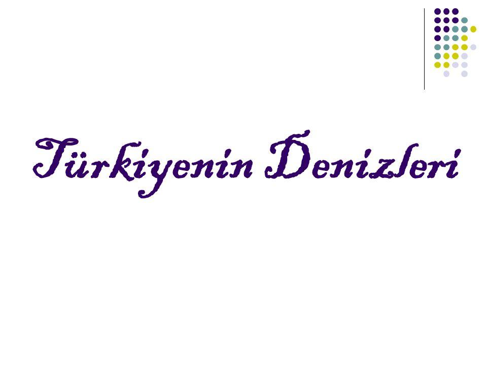 Türkiyenin Denizleri