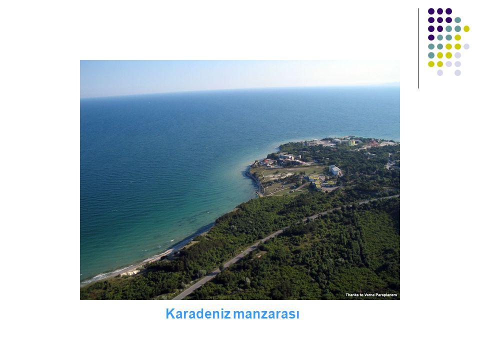 Karadeniz manzarası
