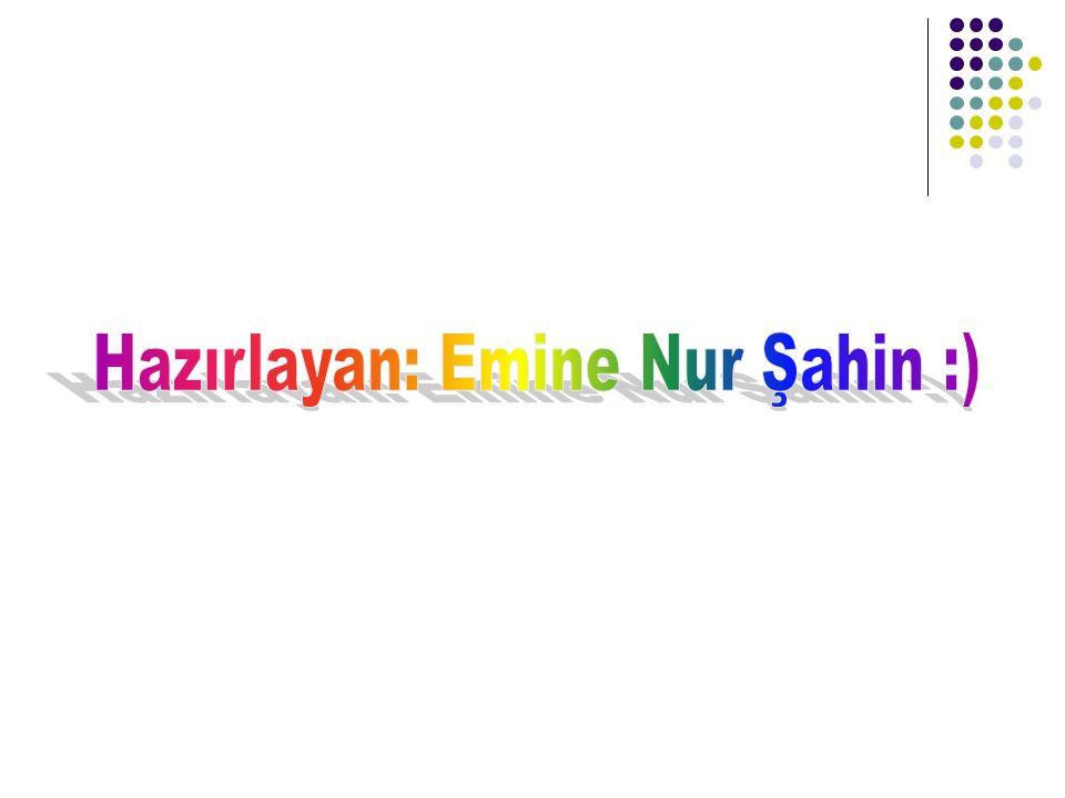 Hazırlayan: Emine Nur Şahin :)