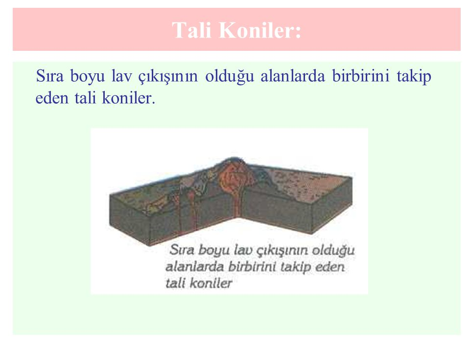 Tali Koniler: Sıra boyu lav çıkışının olduğu alanlarda birbirini takip eden tali koniler.