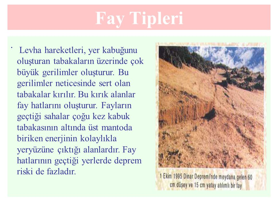 Fay Tipleri .