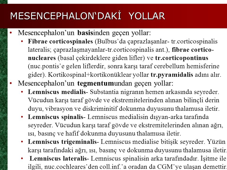 MESENCEPHALON'DAKİ YOLLAR