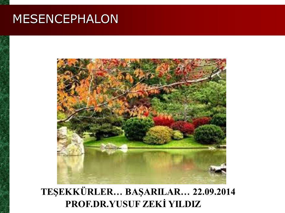 MESENCEPHALON TEŞEKKÜRLER… BAŞARILAR… 22.09.2014