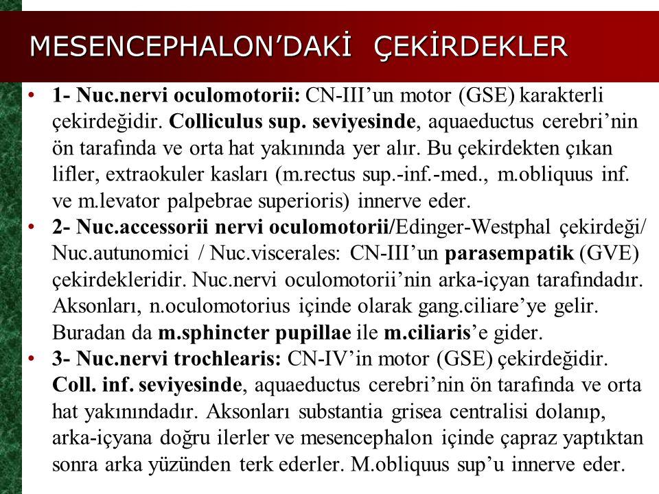 MESENCEPHALON'DAKİ ÇEKİRDEKLER