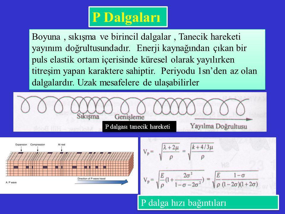 P Dalgaları