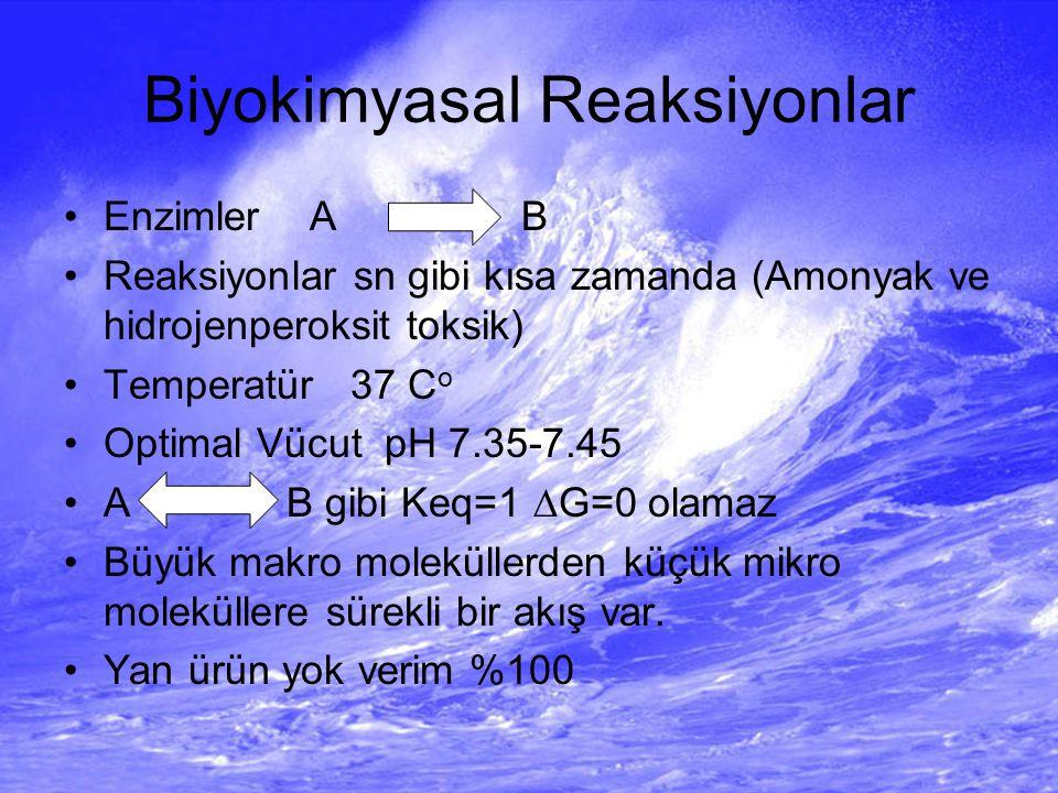 Biyokimyasal Reaksiyonlar