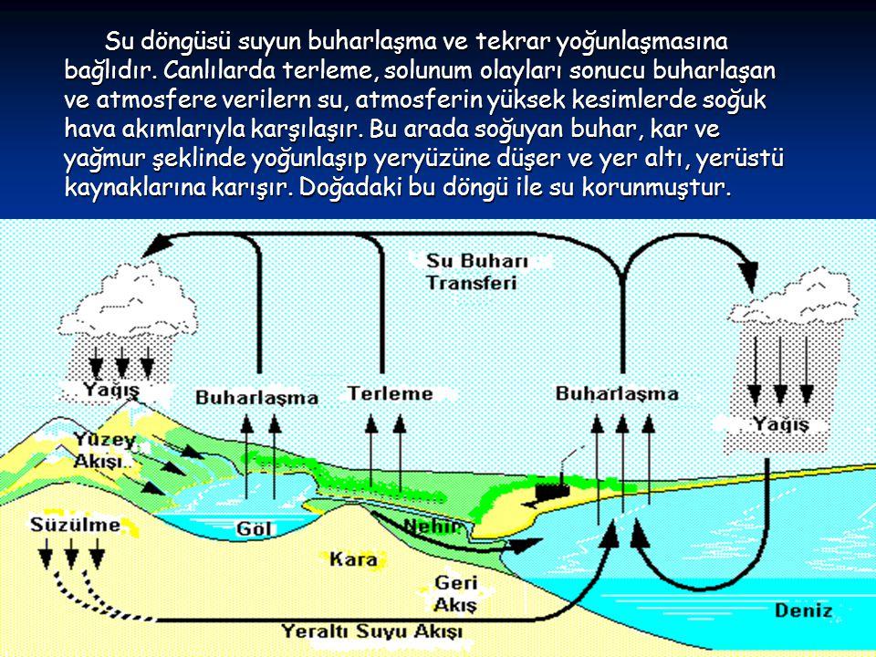 Su döngüsü suyun buharlaşma ve tekrar yoğunlaşmasına bağlıdır