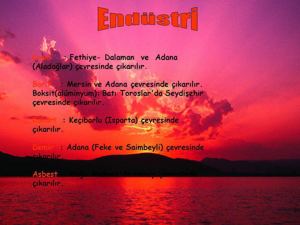 Endüstri Krom : Fethiye- Dalaman ve Adana (Aladağlar) çevresinde çıkarılır. Barit : Mersin ve Adana çevresinde çıkarılır.