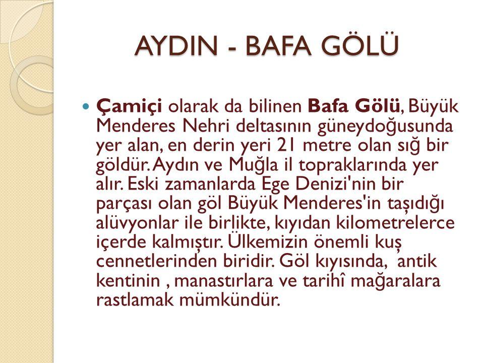 AYDIN - BAFA GÖLÜ