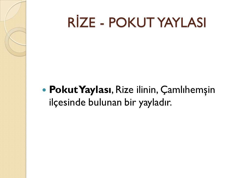 RİZE - POKUT YAYLASI Pokut Yaylası, Rize ilinin, Çamlıhemşin ilçesinde bulunan bir yayladır.