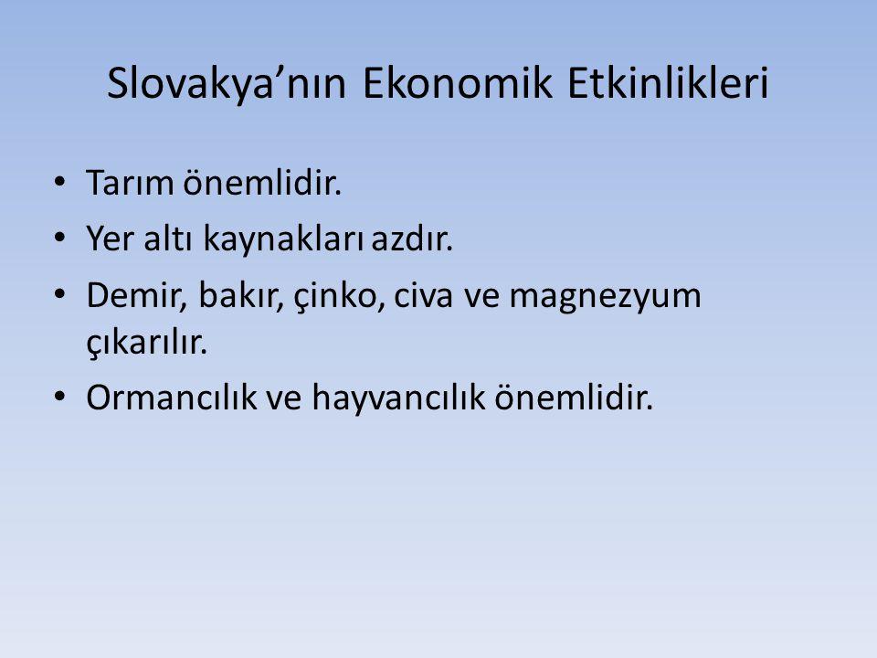 Slovakya'nın Ekonomik Etkinlikleri